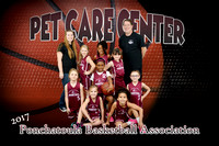 pet care center team girls
