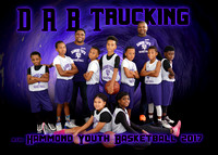 5x7 D A B Trucking 9-10 HARD TEAM